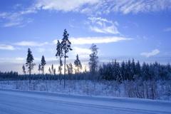 Йоль - праздник середины зимы