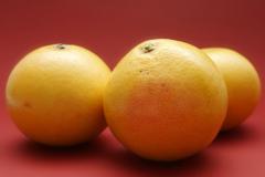 Праздник сбора грейпфрутов на Кубе