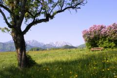 Праздник прихода весны