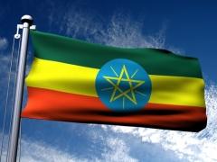 День падения военного режима в Эфиопии