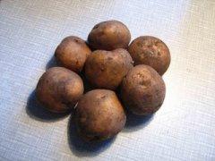 В «Трудах» Вольного экономического общества появилась первая научная статья на тему картофеля «Примечания о картофеле»