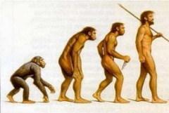 В продаже появился труд Чарльза Дарвина «Происхождение видов»